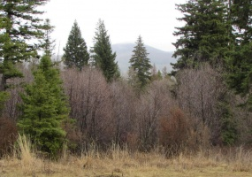 991 Haskill Mountain Road,Kila,Montana,United States 59920,Land,Haskill Mountain Road,1382