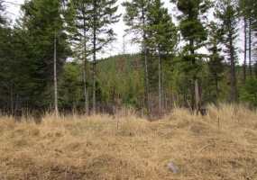 991 Haskill Mountain Road, Kila, Flathead, Montana, United States 59920, ,Land,For sale,Haskill Mountain Road,1418