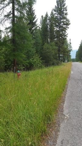 NHN State Park Road, Whitefish, Flathead, Montana, United States 59937, ,Land,For sale,State Park Road,1442