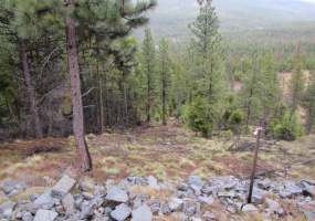 991 Haskill Mountain Road, Kila, Flathead, Montana, United States 59920, ,Land,For sale,Haskill Mountain Road,1487