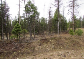 Land, For sale, Conley Court (Lot 41), Listing ID 1059, Kila, Montana, United States, 59920 ,