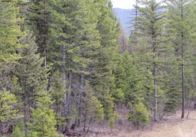 Land, For sale, Haskil Ranch Road (Lot 38), Listing ID 1061, Kila, Montana, United States, 59920,