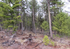 Land, For sale, Haskil Ranch Road (Lot 37), Listing ID 1062, Kila, Montana, United States, 59920 ,