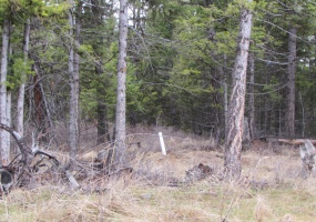 Land, For sale, Haskil Ranch Road (Lot 36), Listing ID 1063, Kila, Montana, United States, 59920,