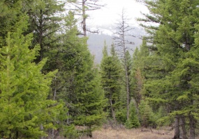 Land, For sale, Haskil Ranch Road (Lot 35), Listing ID 1064, Kila, Montana, United States, 59920,