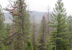 Land, For sale, Haskill Ranch Road (Lot 30), Listing ID 1068, Kila, Montana, United States, 59920,
