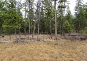 Land, For sale,  Haskill Ranch Road (Lot 27), Listing ID 1071, Montana, United States, 59920,