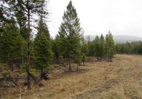 Land, For sale, Haskill Ranch Road (Lot 26), Listing ID 1072, Kila, Montana, United States, 59920,