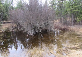 Land, For sale, Haskill Ranch Road (Lot 24), Listing ID 1074, Kila, Montana, United States, 59920,