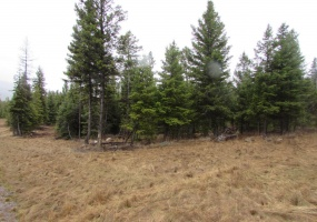 Land, For sale, Haskill Ranch Road (Lot 9), Listing ID 1087, Kila, Montana, United States, 59920,