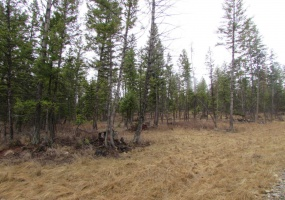 Land, For sale, Blaney Lane (Lot 5), Listing ID 1091, Kila, Montana, United States, 59920,
